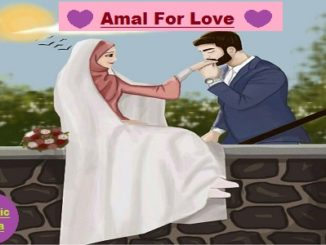Sifli Amal For Love